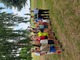 Piknik Rodzinny (6).jpeg