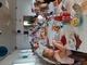Galeria 2021 Dzień Ziemniaka